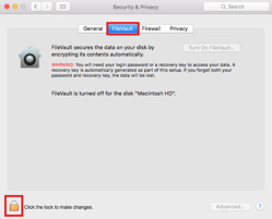 Click the 'FileVault' tab