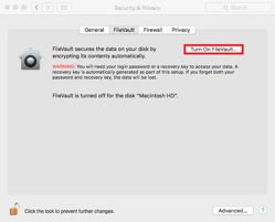 Click the 'Turn On FileVault...' button